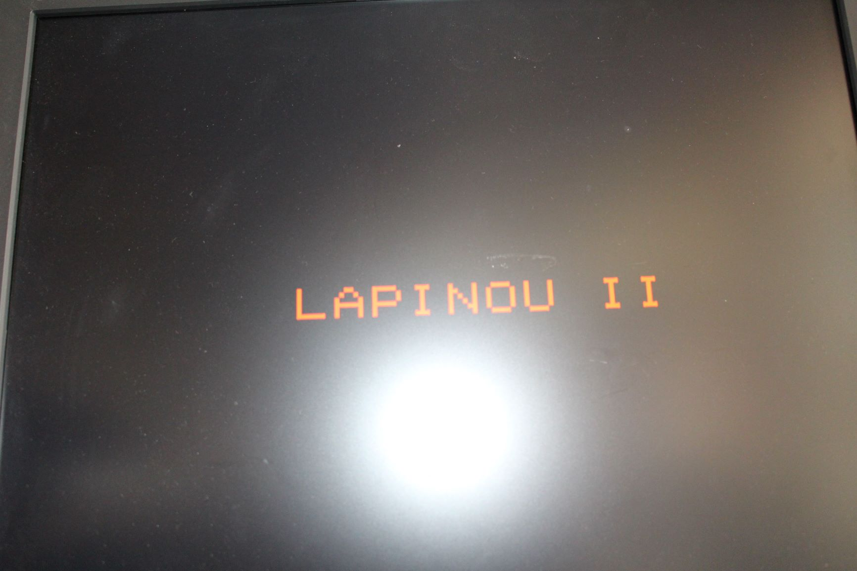 Lapinou_II_2MP.JPG